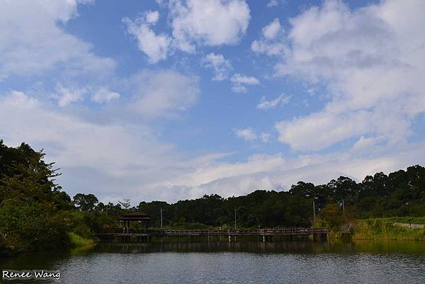 2013.01.24 富里--03羅山村泥火山田埂_DSC_5282.JPG