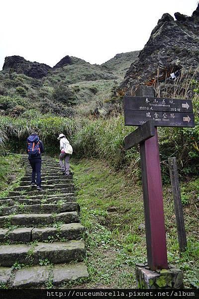 2015.03.28  茶壺山半平山O型縱走_Renee_DSC7639.jpg
