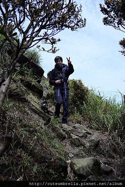 2015.03.28  茶壺山半平山O型縱走_Renee_DSC7763.jpg