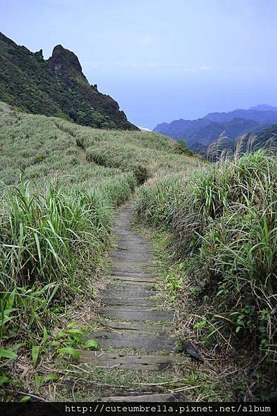 2015.03.28  茶壺山半平山O型縱走_Renee_DSC7790.jpg