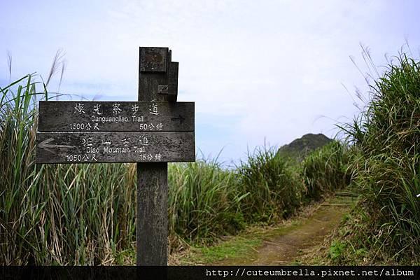 2015.03.28  茶壺山半平山O型縱走_Renee_DSC7792.jpg