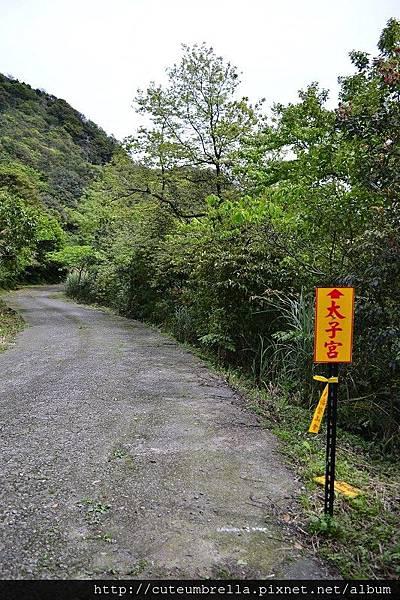 2015.03.28  茶壺山半平山O型縱走_Renee_DSC7798.jpg