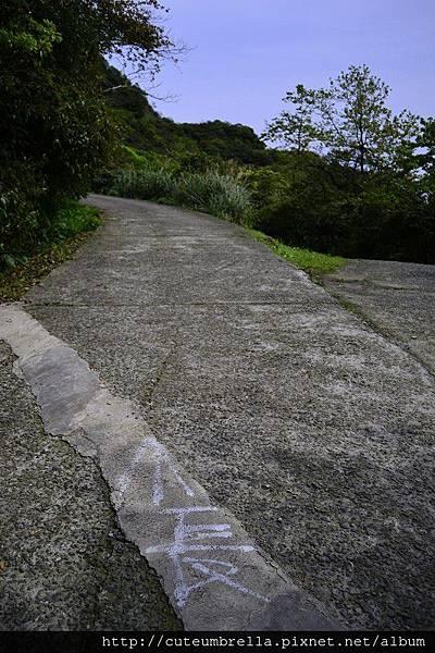 2015.03.28  茶壺山半平山O型縱走_Renee_DSC7801.jpg