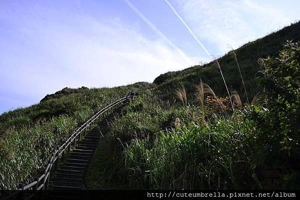 2015.03.28  茶壺山半平山O型縱走_Renee_DSC7824.jpg
