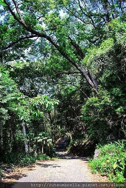 2015.04.25 Tungmaoshan, Mt. Tobo_Renee_DSC8067-1.jpg