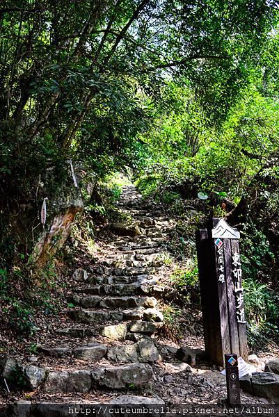 2015.04.25 Tungmaoshan, Mt. Tobo_Renee_DSC8077-1.jpg
