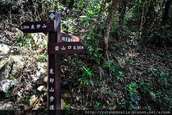2015.04.25 Tungmaoshan, Mt. Tobo_Renee_DSC8087-1.jpg