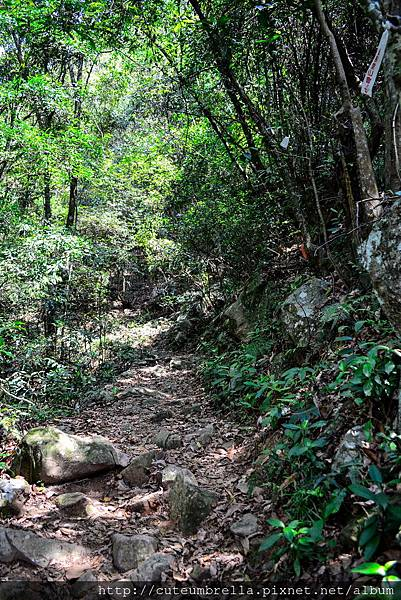 2015.04.25 Tungmaoshan, Mt. Tobo_Renee_DSC8089-1.jpg