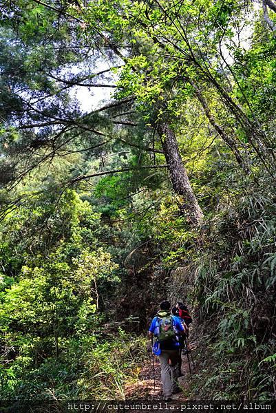 2015.04.25 Tungmaoshan, Mt. Tobo_Renee_DSC8104-1.jpg