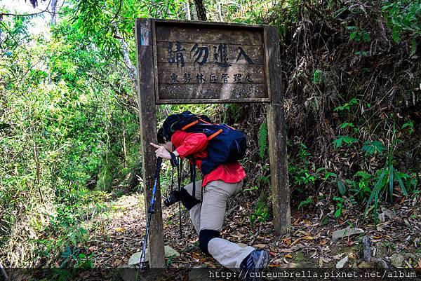 2015.04.25 Tungmaoshan, Mt. Tobo_Renee_DSC8123-1.jpg
