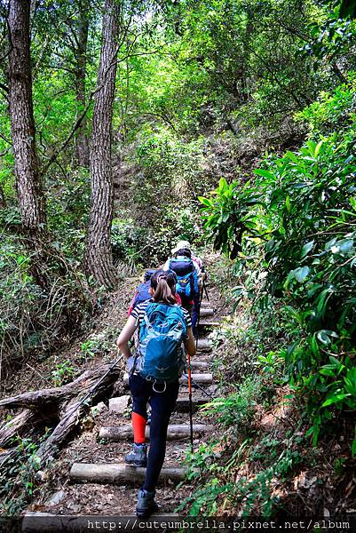 2015.04.25 Tungmaoshan, Mt. Tobo_Renee_DSC8197-1.jpg