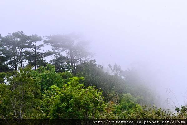 2015.04.25 Tungmaoshan, Mt. Tobo_Renee-8337.jpg