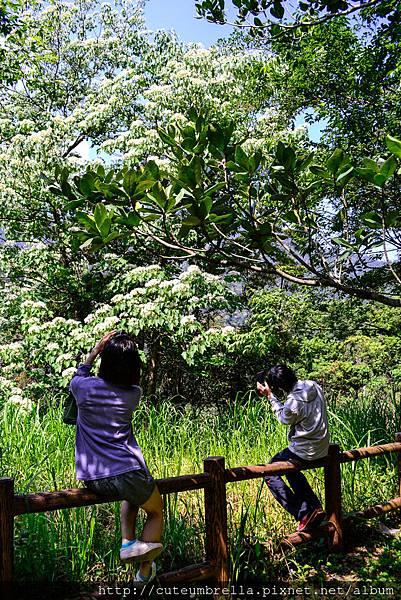 2015.04.25 Tungmaoshan, Mt. Tobo_Renee-8365.jpg