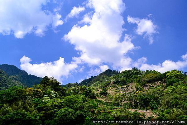 2015.04.25 Tungmaoshan, Mt. Tobo_Renee-8378.jpg