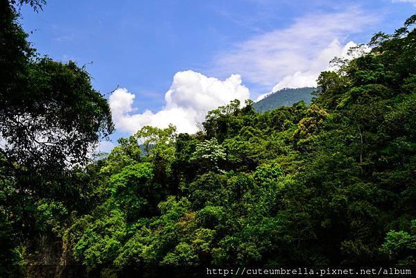 2015.04.25 Tungmaoshan, Mt. Tobo_Renee-8414.jpg