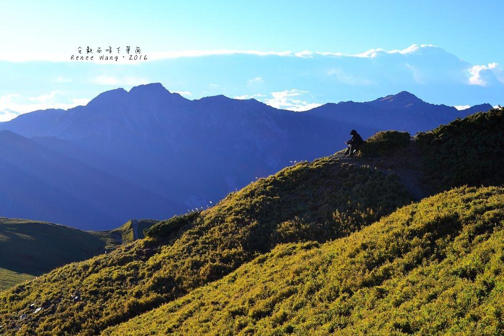 2015.11.15 合歡西北峰下華崗_Renee_DSC0529-1.jpg