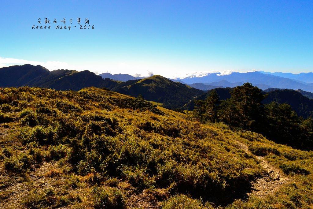 2015.11.15 合歡西北峰下華崗_Renee_DSC0605-1.jpg