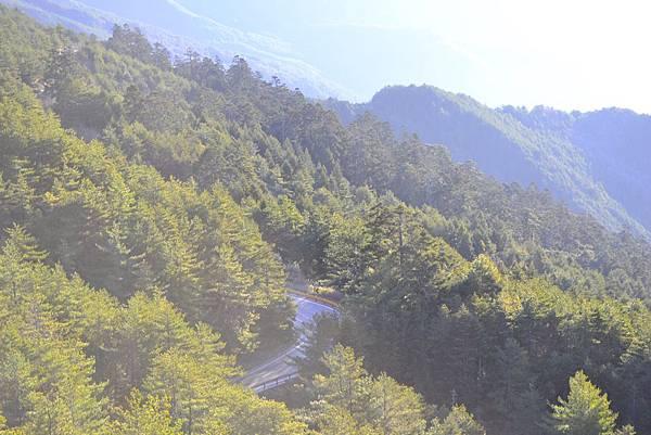 2016.03.05-06  合歡小溪營地_Renee_DSC3351.jpg