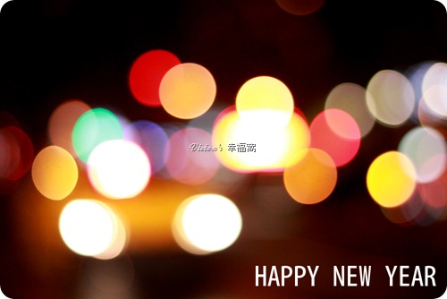 2013_happy-new-year