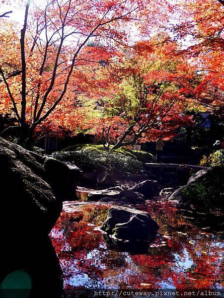 荻漥 大田黑公園