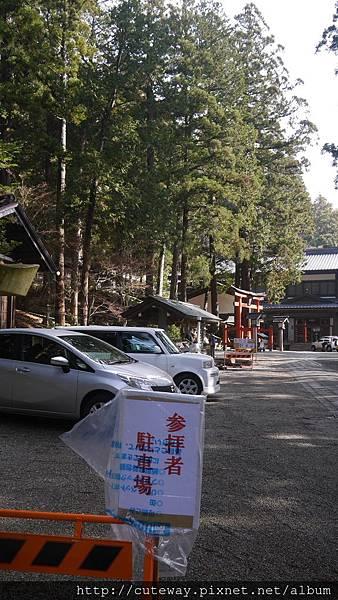 你的名字聖地巡禮-日枝神社