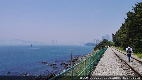 [海雲台]東海廢棄鐵道