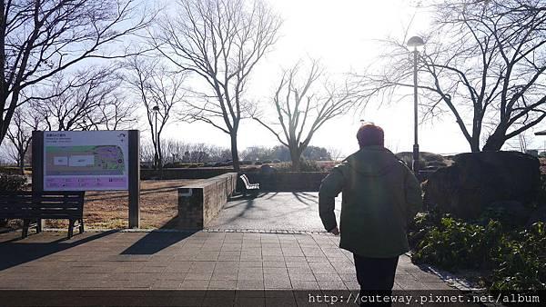 中央自動道-雙葉SA休息站