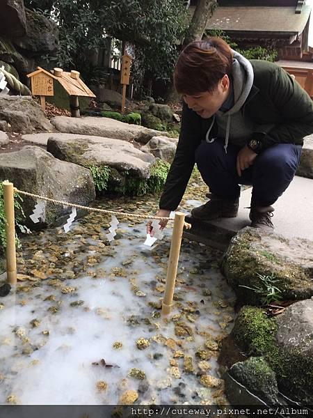 [川越]氷川神社