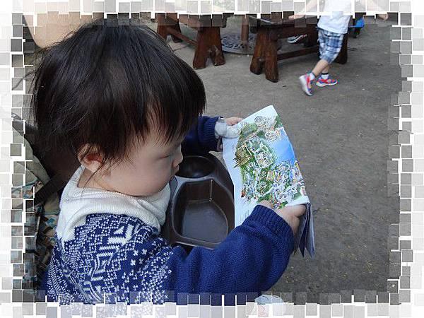 PhotoCap_DSC04808