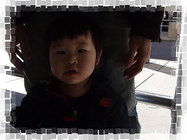 PhotoCap_DSC04943