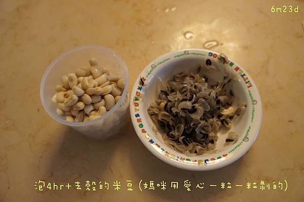 0912 米豆 (5).JPG