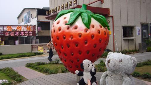 大湖-熊熊+草莓