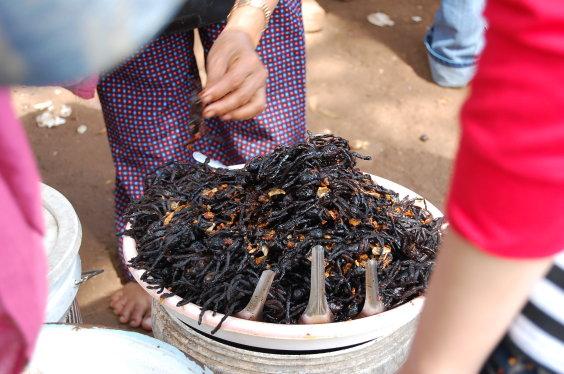 高棉-蜘蛛