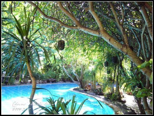 BALI- green garden