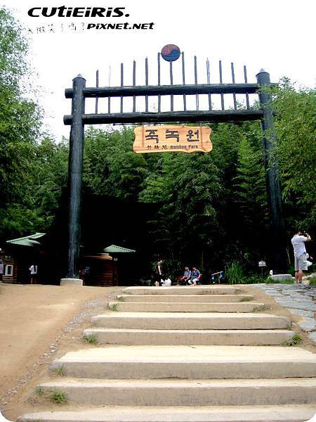 綠園 (4).JPG