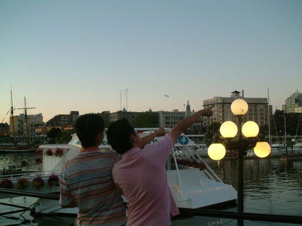 Victoria港   跟俊佑一起看星星