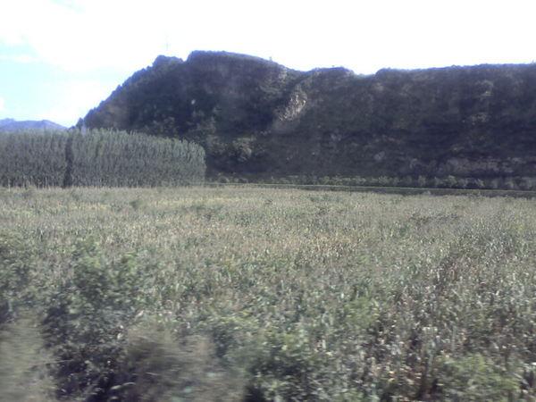 車外的塞外草原