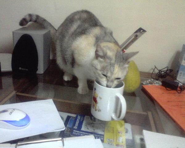 她很堅持我喝的水比較好喝~~