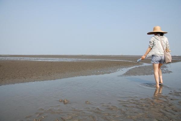 泥灘地.jpg