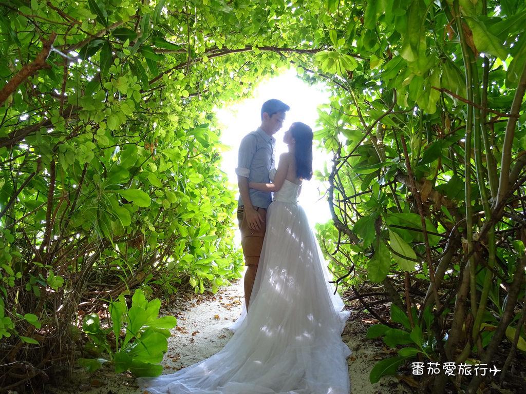 馬爾地夫婚紗 (6)
