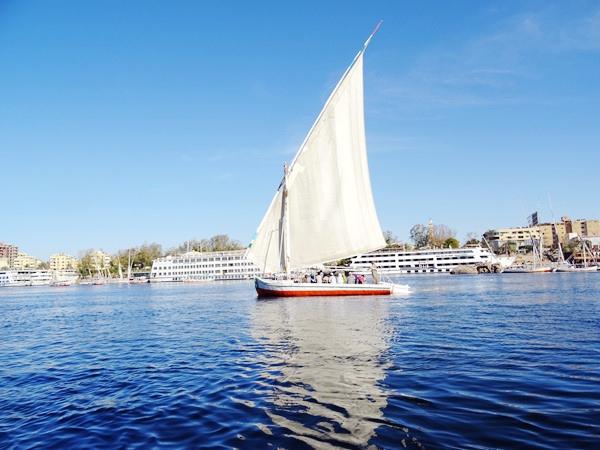埃及2016.2.12 (94)