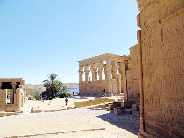 埃及2016.2.12 (51)