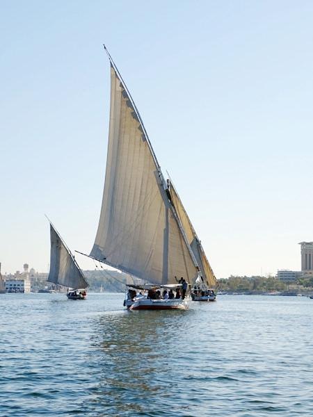 埃及2016.2.12 (88)