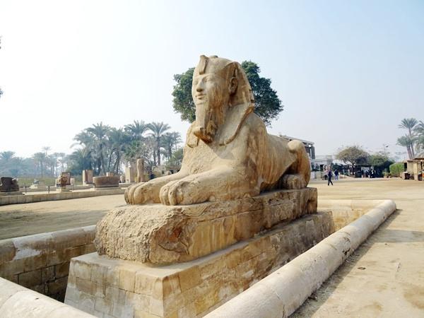 埃及2016.2.11 (40)