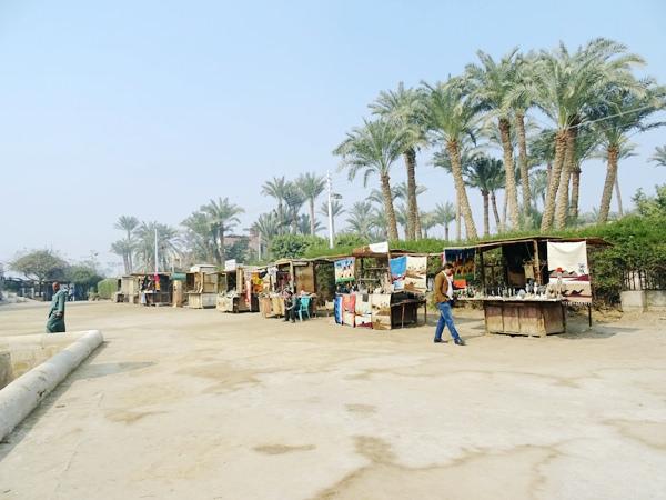 埃及2016.2.11 (41)