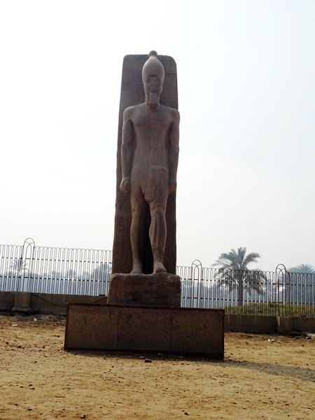 埃及2016.2.11 (43)