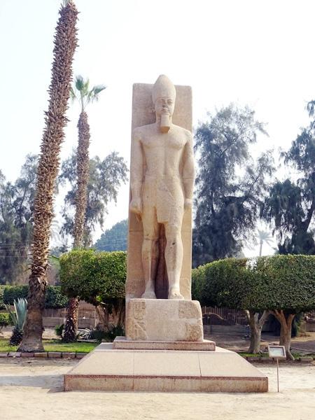 埃及2016.2.11 (44)