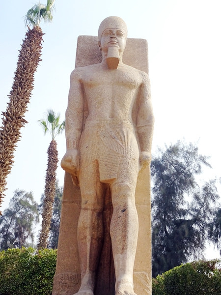 埃及2016.2.11 (45)