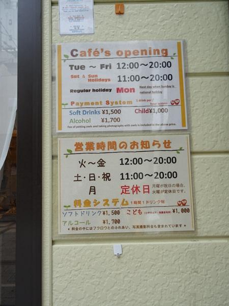 貓頭鷹咖啡館&天麩羅 (4)