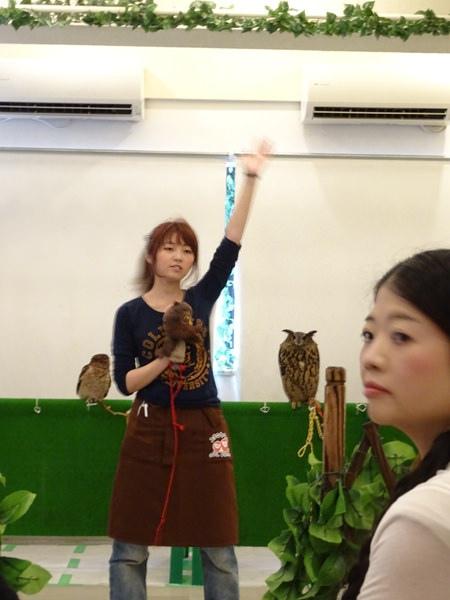 貓頭鷹咖啡館&天麩羅 (19)